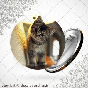 پیکسل طرح گربه